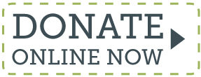 gpf-donate-now-button